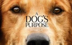 Movie Review: A Dogs Purpose